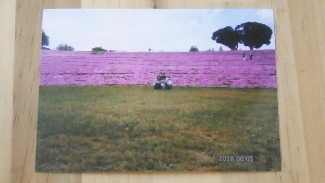 マザー牧場写真
