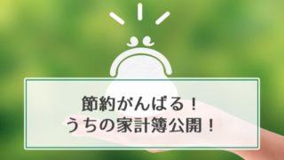【節約】うちのやばい家計簿公開!