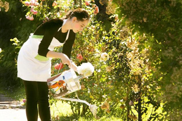 【母の日】カーネーションは鉢植えだと毎年楽しめます!