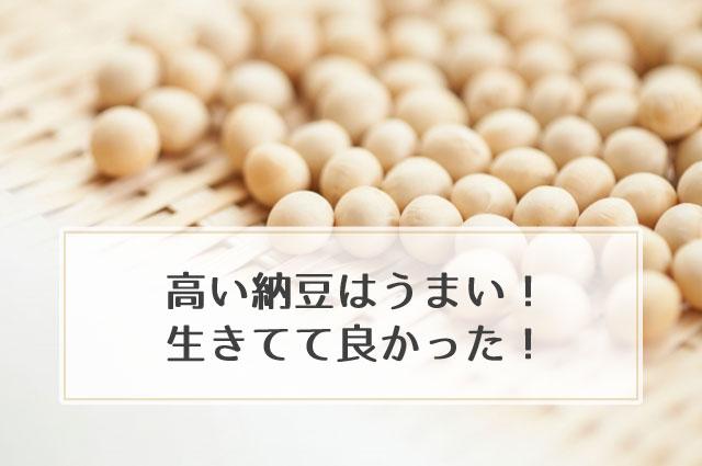 納豆で人生論。高い納豆は美味しい